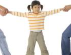Plan parental pe formatul propus de ARPCC, acceptat de CA Ploieşti