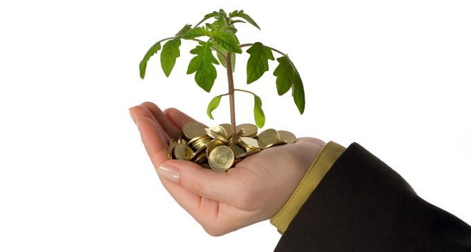 Toti debutantii in afaceri vor putea accesa credite nerambursabile